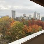 中島公園の紅葉を臨む(眺望)
