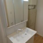 ボールタイプ洗面台と引出しシャワー水洗いでお掃除も簡単(洗面所)
