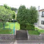 向かい公園(周辺)
