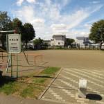 マンション向かいの公園(周辺)