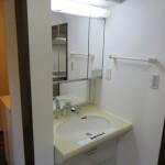 ハンドルシャワー付き洗面化粧台(洗面所)